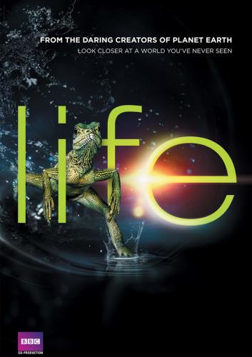 BBC Life Hayat Bölüm 5 – 8