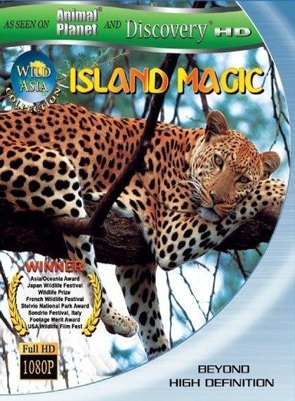 Sihir Adası