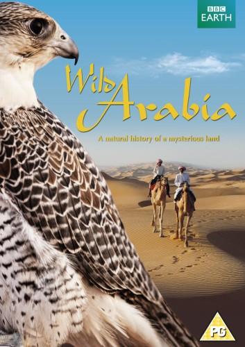 BBC Gizemli Diyar Arabistan 2. Bölüm