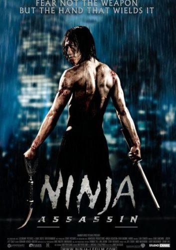 Ninjanın İntikamı