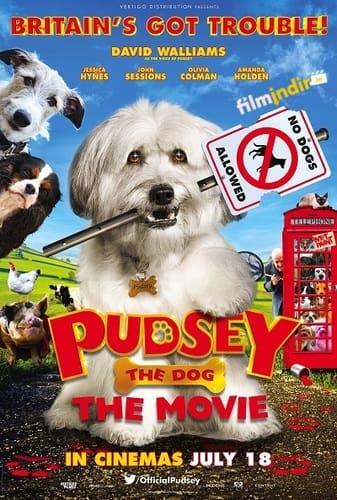 Kahraman Köpek Pudsey
