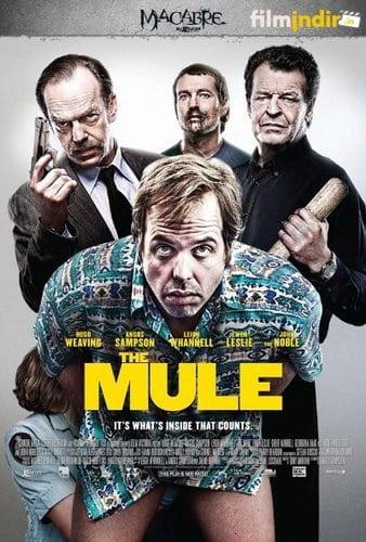 Kurye - The Mule