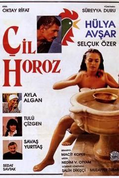 Çil Horoz