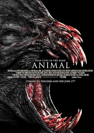 Hayvan – Animal