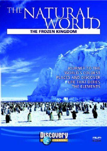 Buz İmparatorluğu