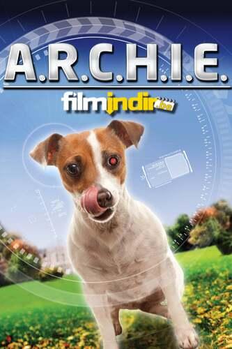 Robot Köpek Archie