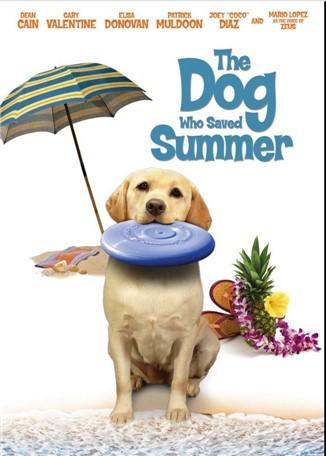 Yaz Köpeği