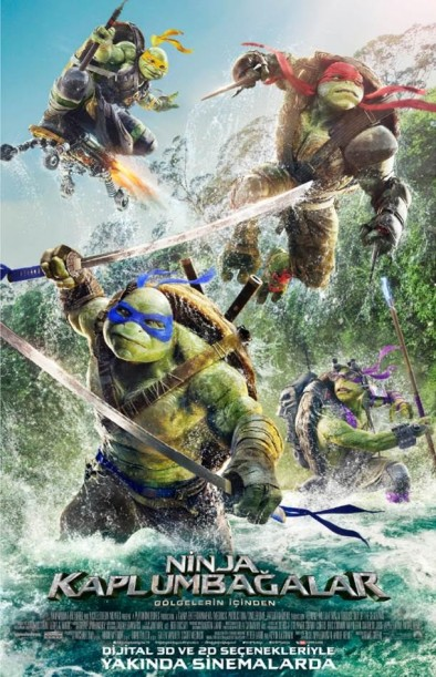 Ninja Kaplumbağalar Gölgelerin İçinden