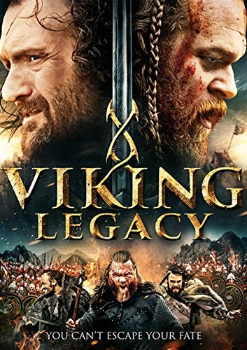 Viking Kanı