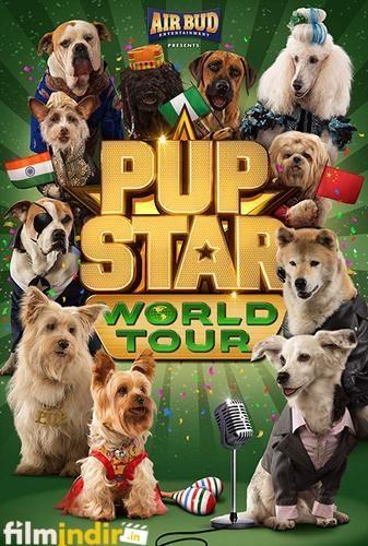 Yıldız Yavru Köpekler: Dünya Turu