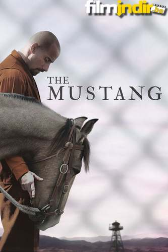 Mustang: Yabani At